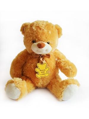 Медведь B21 - 60