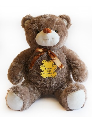 Медведь B21 - 60.9