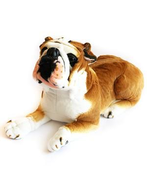 Собака 7GW53BU - BR53