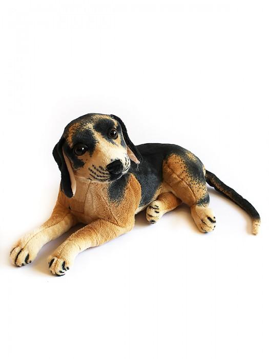 Собака GC46B - 46
